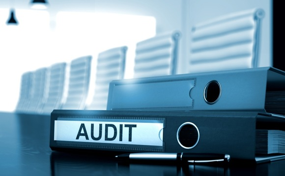auditors the last line of defence