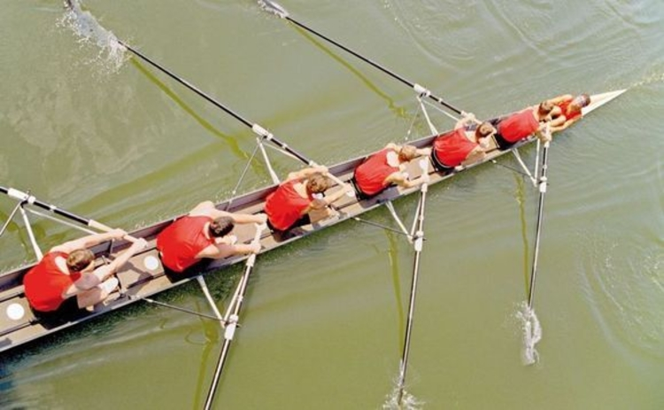 Rowing crew from above