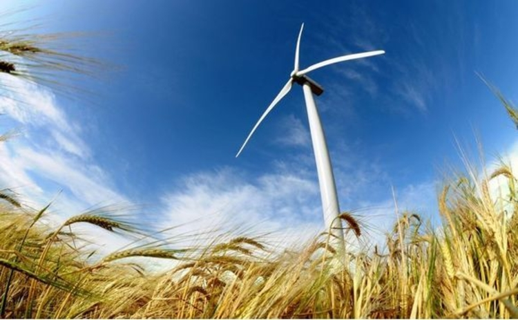 wind-turbine-environment-wheat