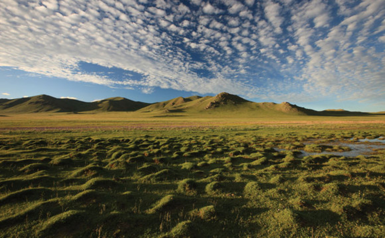 A view of the Mongolian steppe
