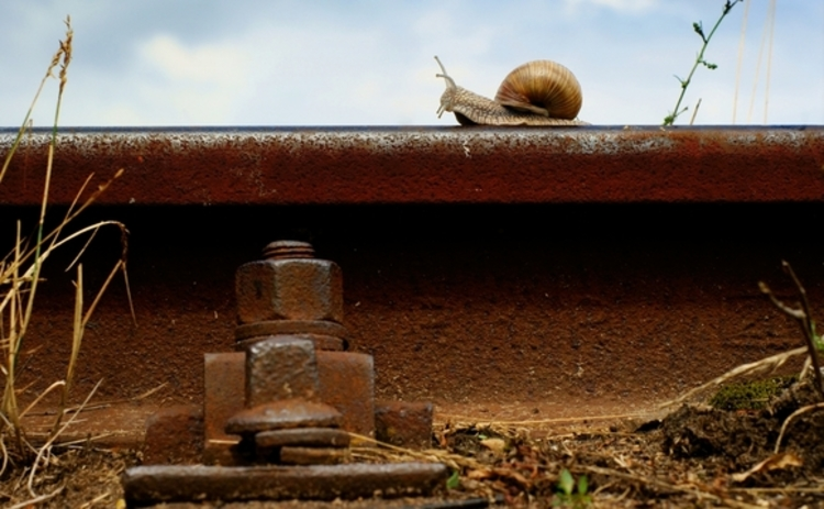 snail-on-train-track