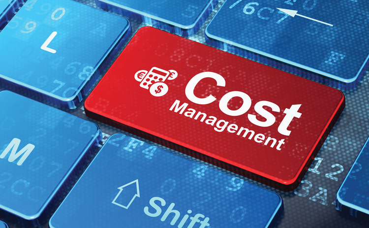 risk-0116-indepth-2-cost-management